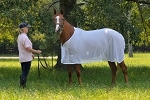 Fenwick Bodyguard Horse Fly Sheet