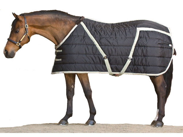 Winter Horse Blankets >> Blue Ribbon Custom Quilted Horse Blanket